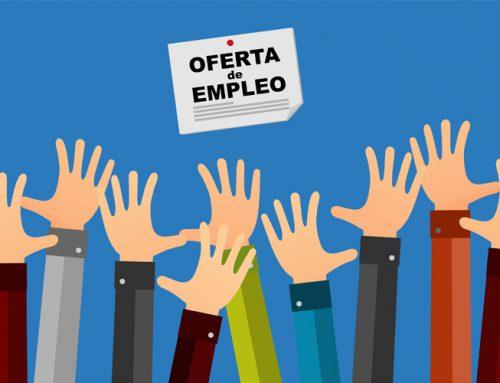 Empleo: Técnico de Servicios