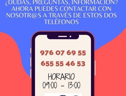 MÓVIL DEL CEES/HORARIO DE VERANO